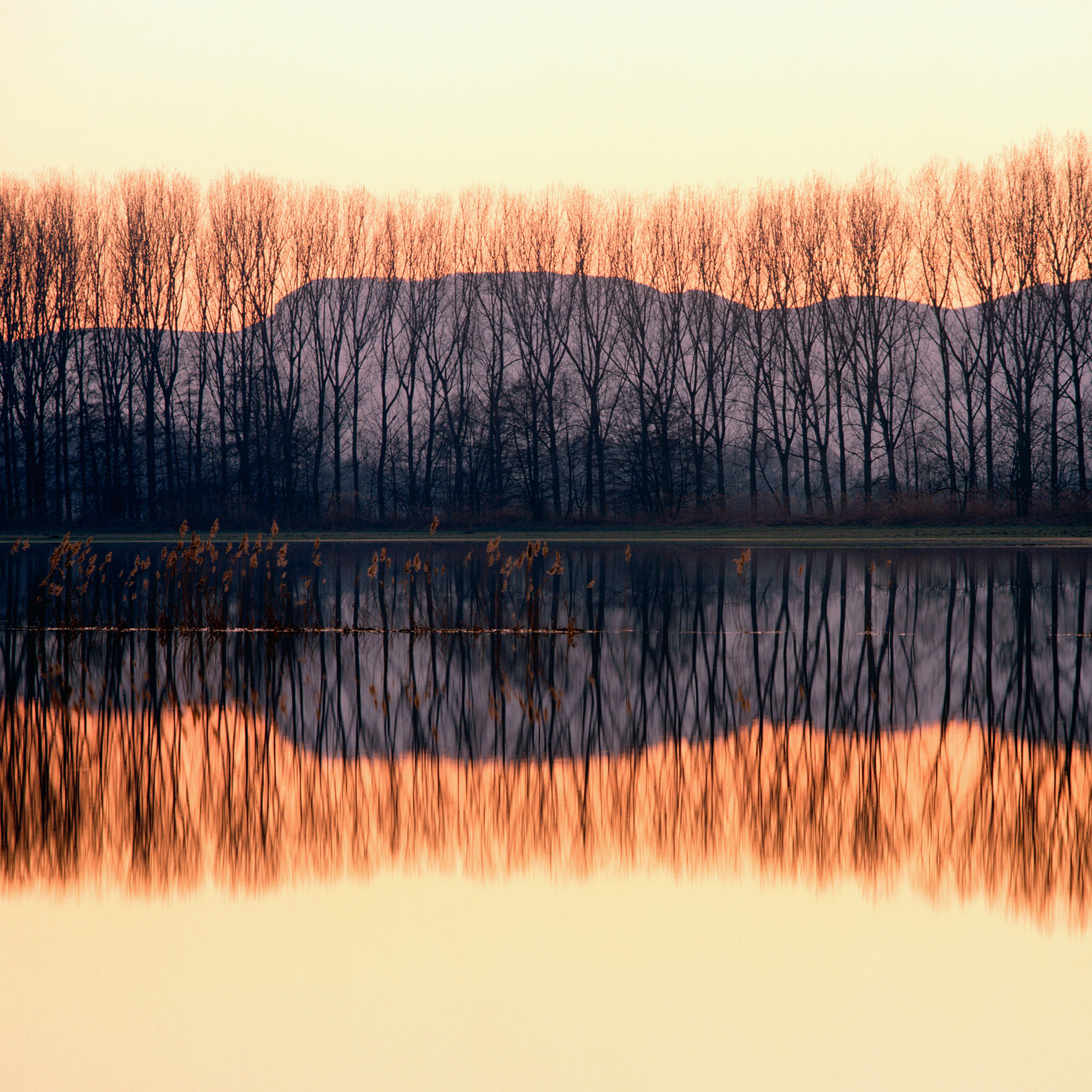 Selestat, Bas Rhin, France (020010)