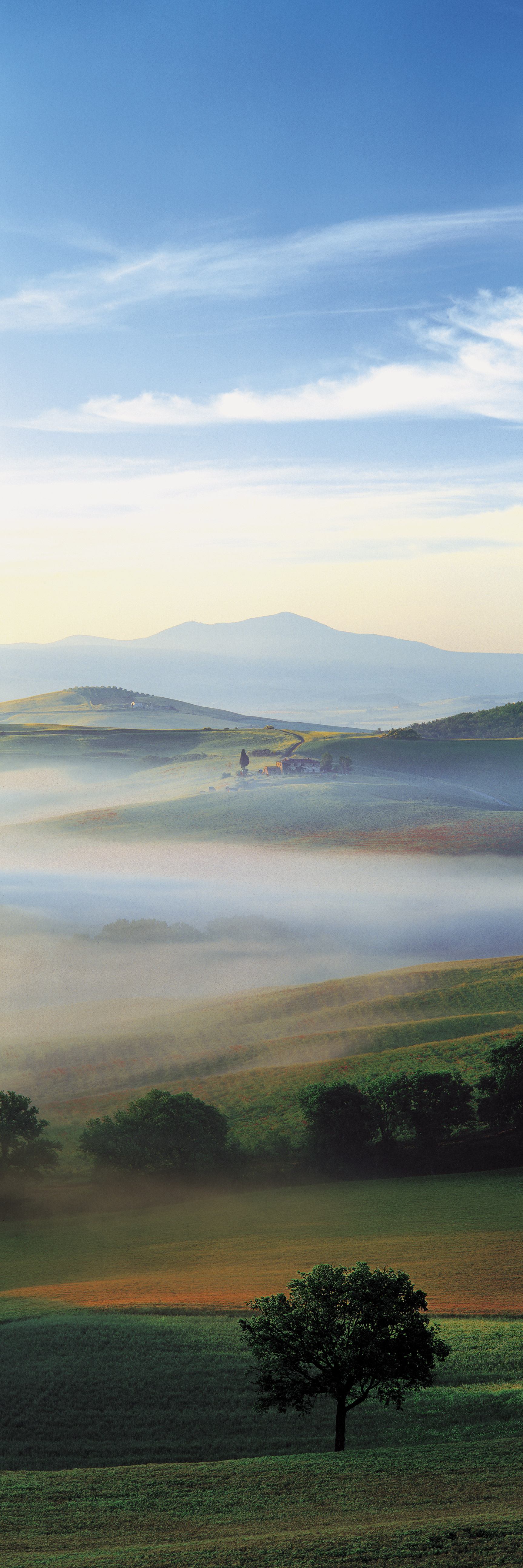 Val d'Orcia IV, Tuscany, Italy (030265)