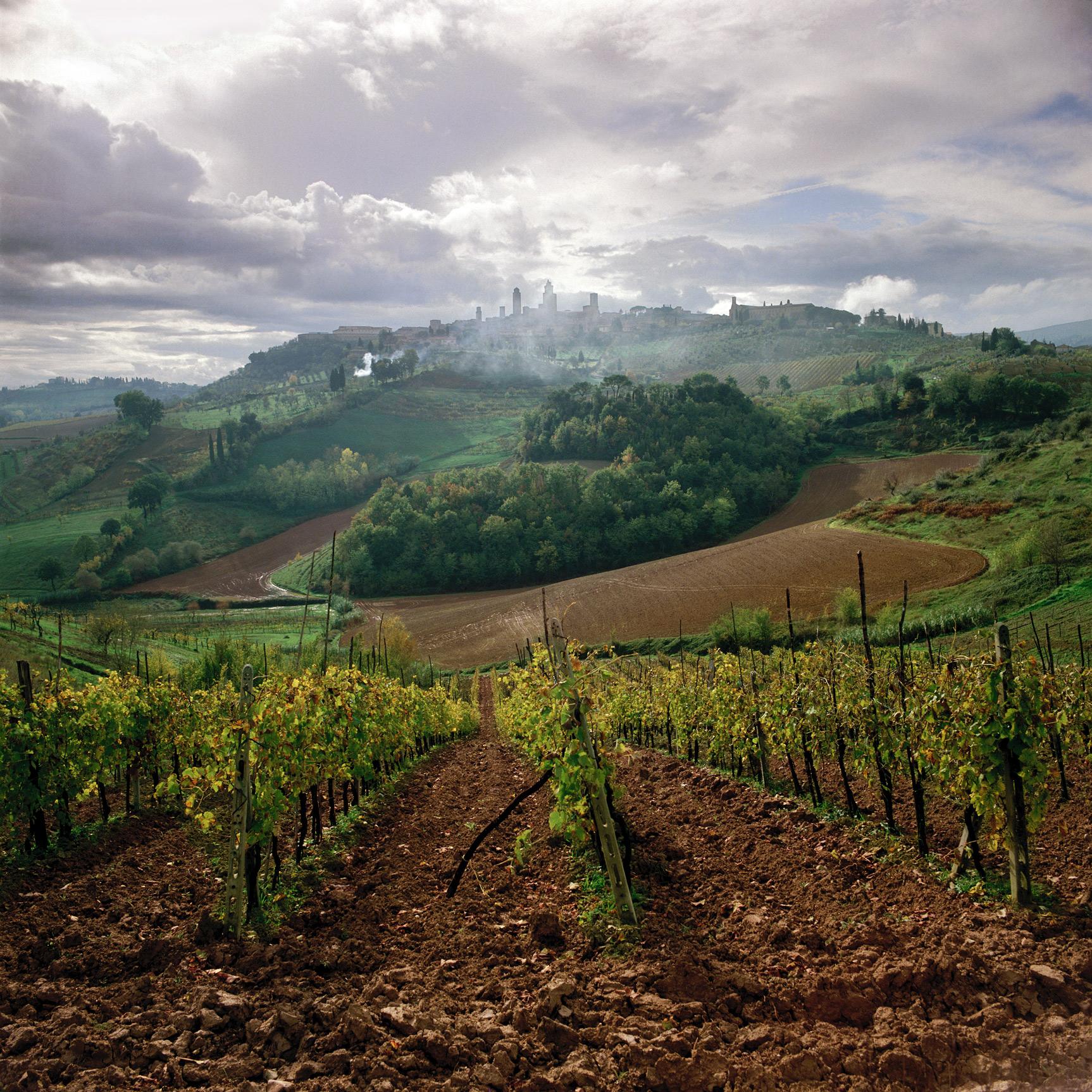 San Gimignano, Tuscany, Italy (030033)