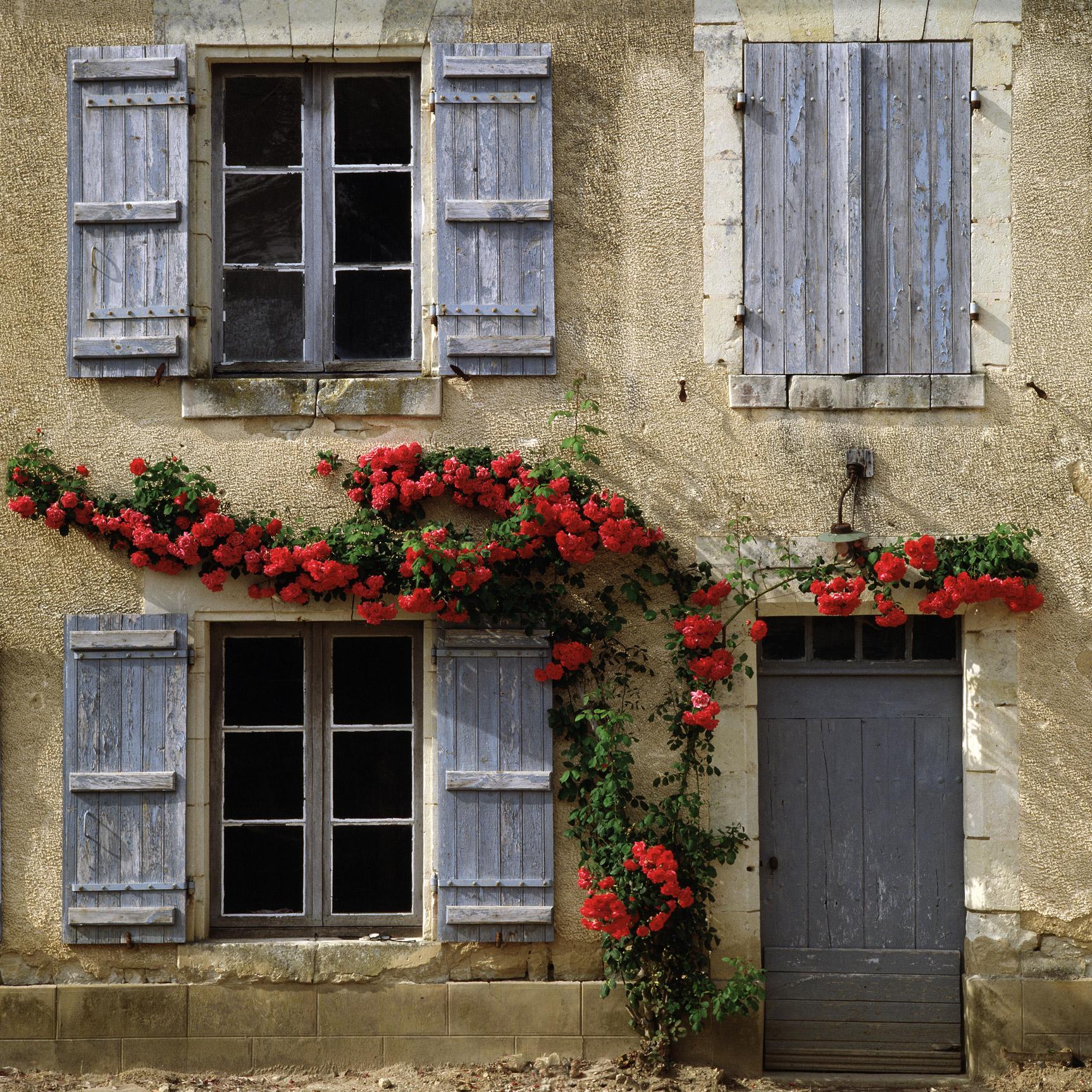 Near Orleans, France (020043)