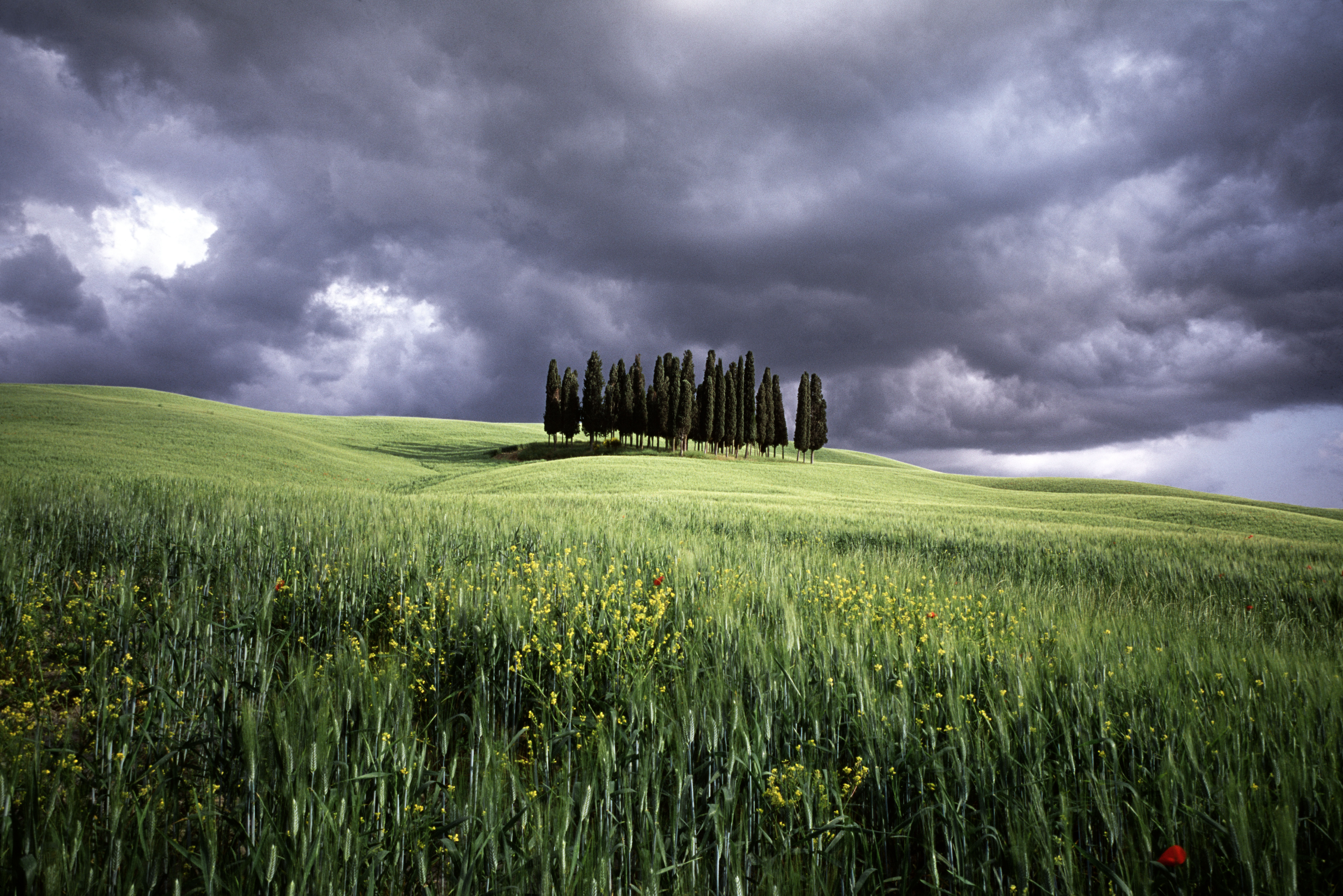 St Quirico d'orcia, Italy (030900)