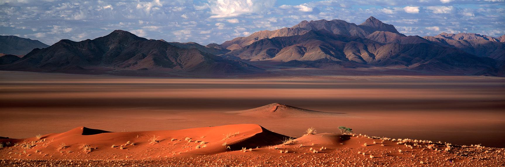 Sossusvlei III, Namibia (010075)