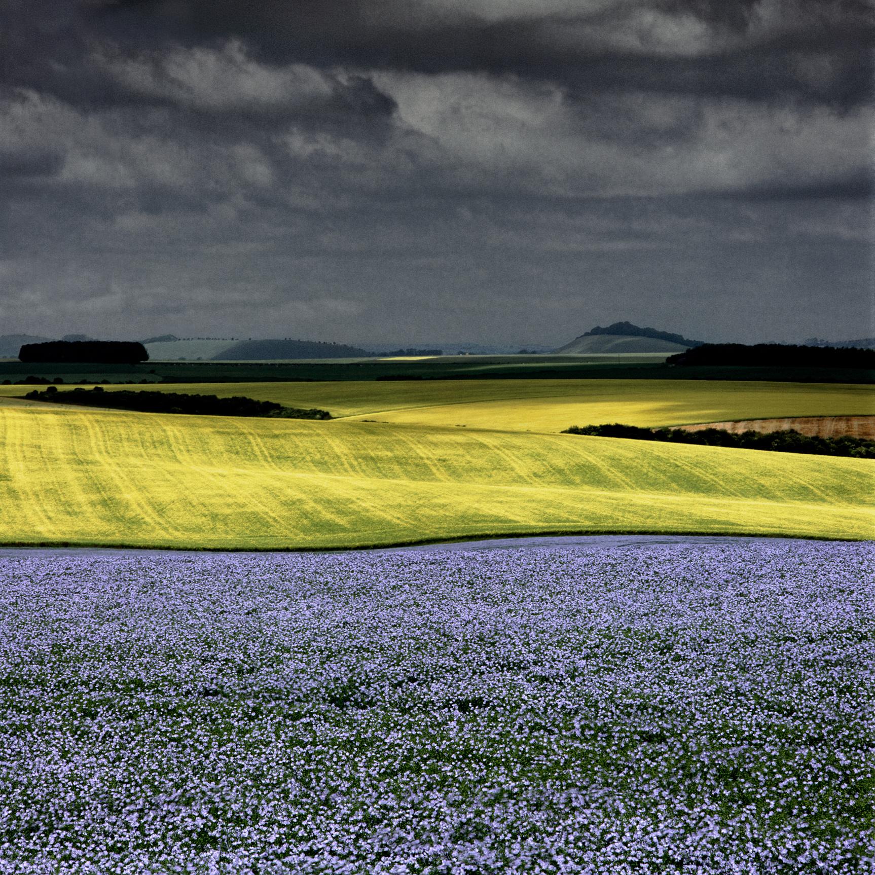 Chicklade, England (060015)